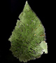 Moldavite crystals  - Natural Crystals and Mineral Specimens